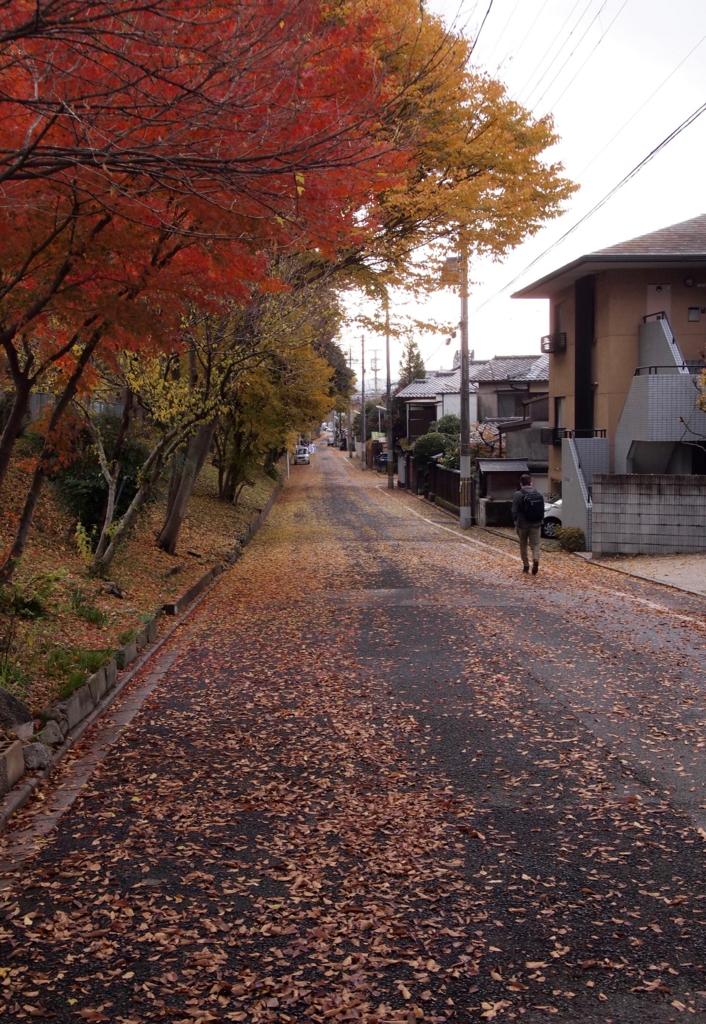 f:id:nikosuzumemi:20161011203750j:plain