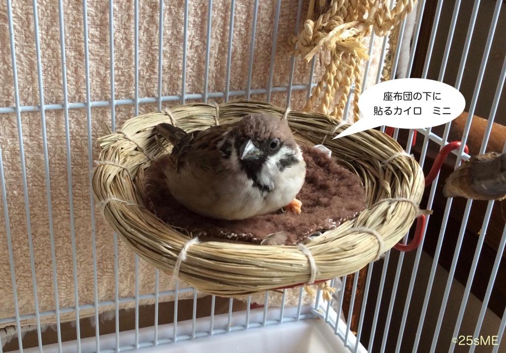 f:id:nikosuzumemi:20161025171238j:plain