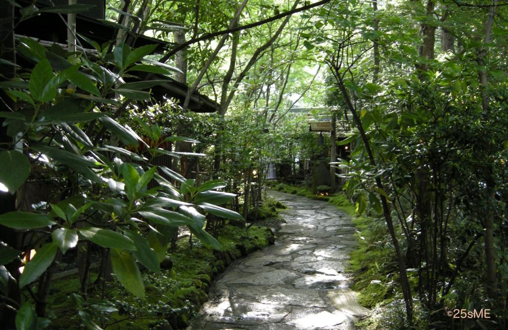 f:id:nikosuzumemi:20161212155720j:plain