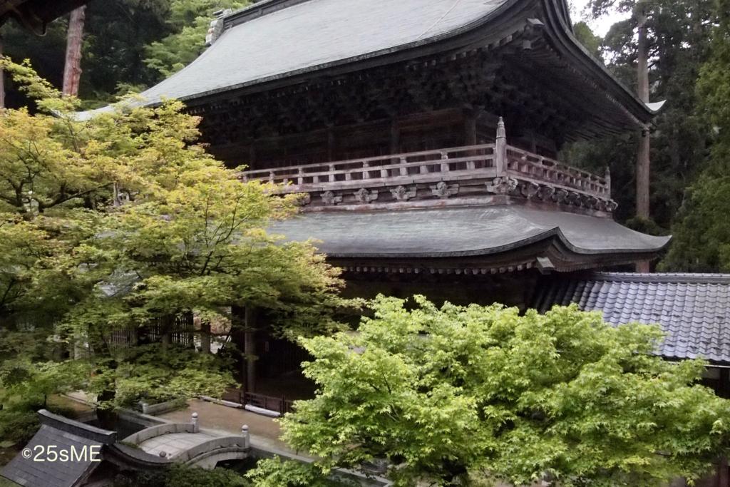 f:id:nikosuzumemi:20161223204655j:plain