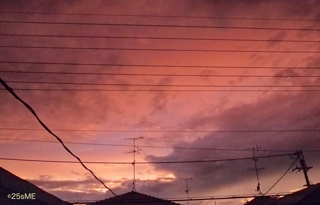 f:id:nikosuzumemi:20170212102706j:plain