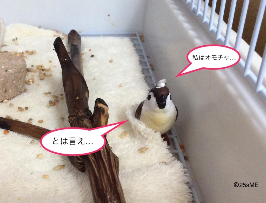 f:id:nikosuzumemi:20170623111201j:plain