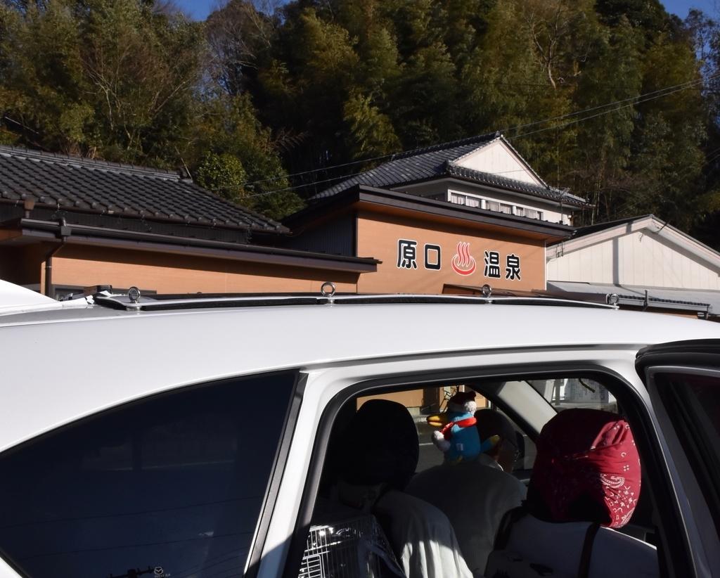 f:id:nikosuzumemi:20190111124608j:plain
