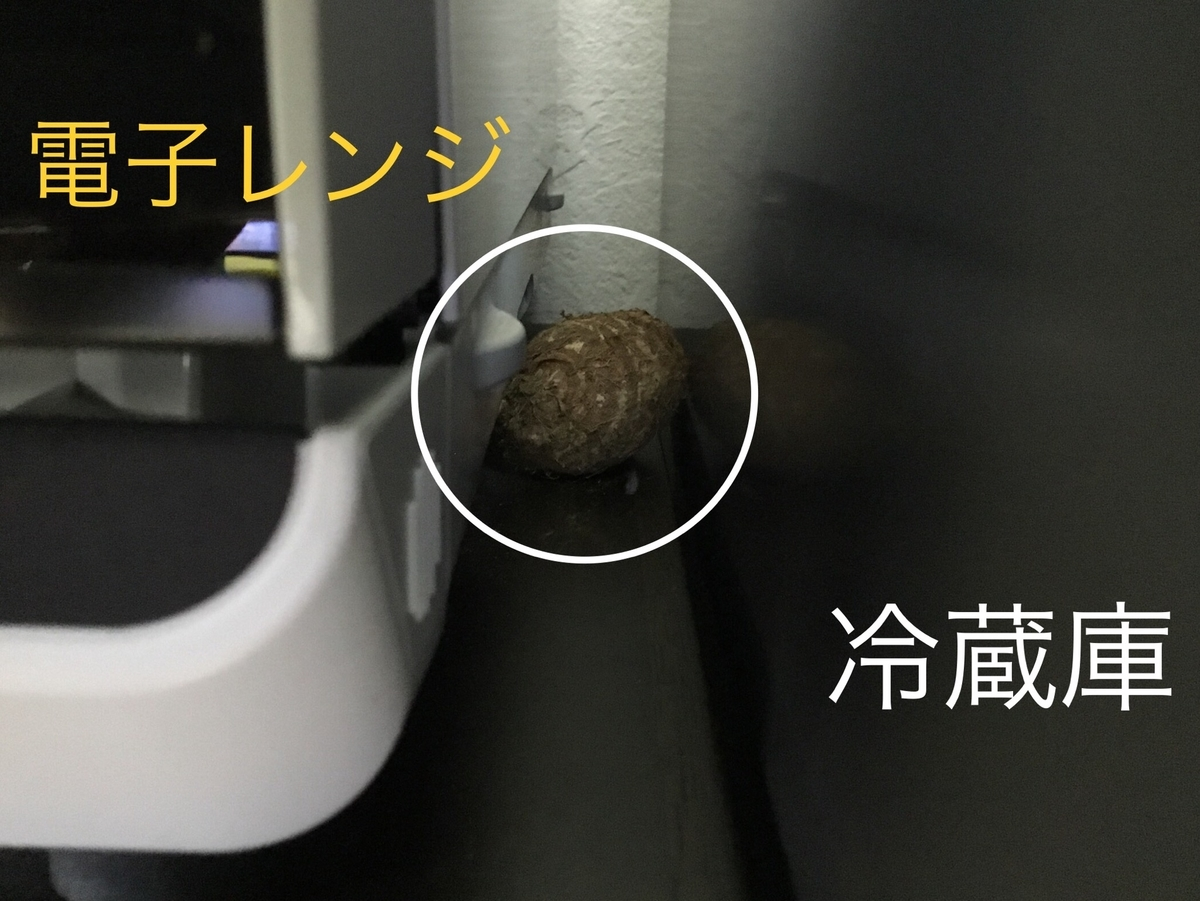 f:id:nikosuzumemi:20190531122002j:plain