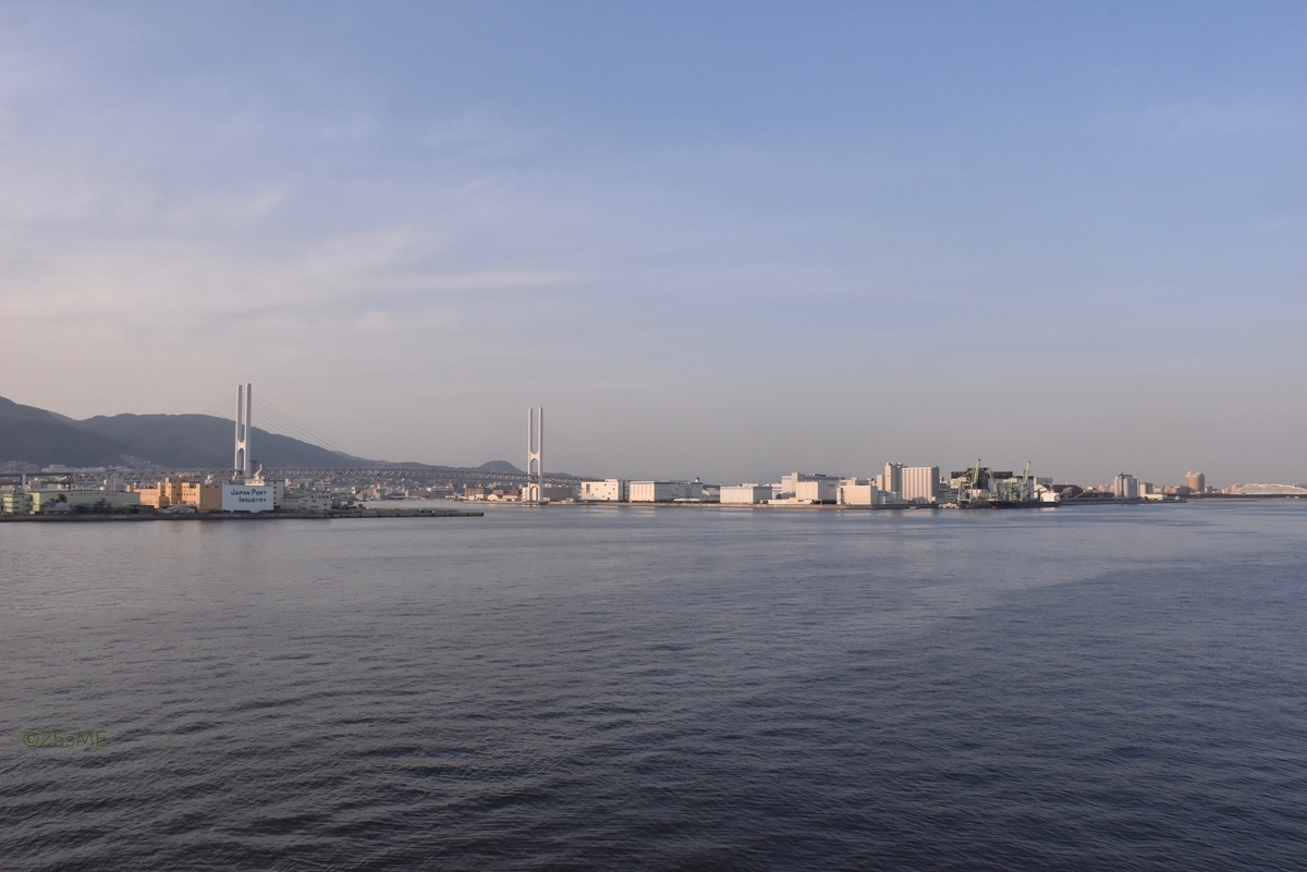 f:id:nikosuzumemi:20190611171751j:plain