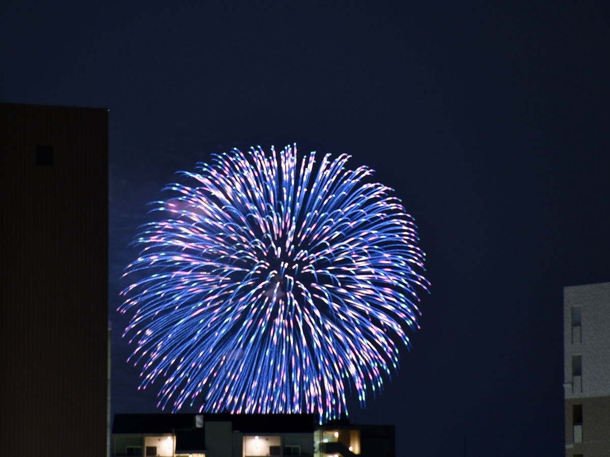 f:id:nikosuzumemi:20190811180759j:plain