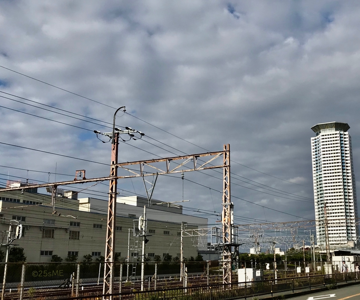 f:id:nikosuzumemi:20191014133834j:plain