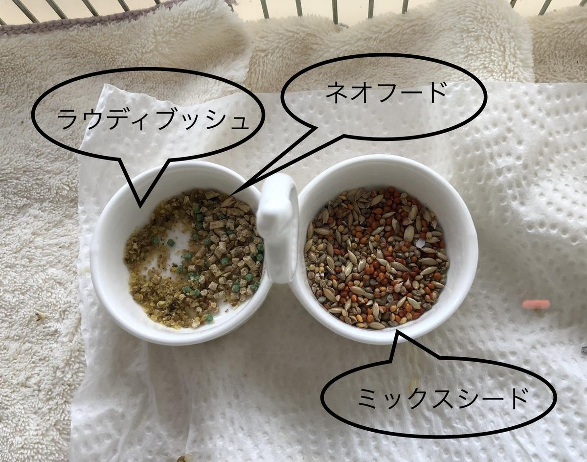 f:id:nikosuzumemi:20210610092057j:plain