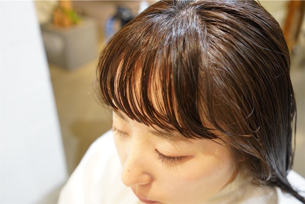 f:id:nikruhashimoto:20200110185545j:image