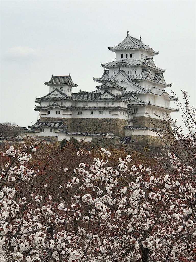 f:id:nikumaru29:20170405224846j:image