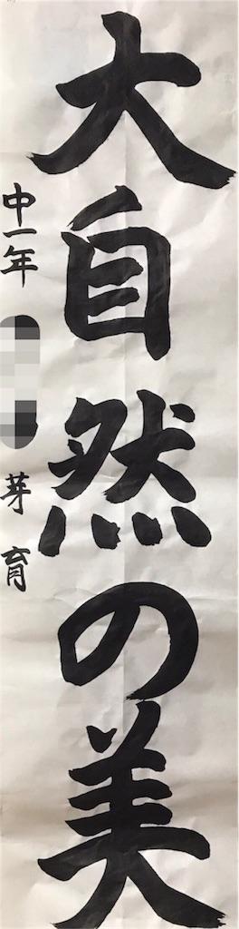 f:id:nikumaru29:20170617235036j:image