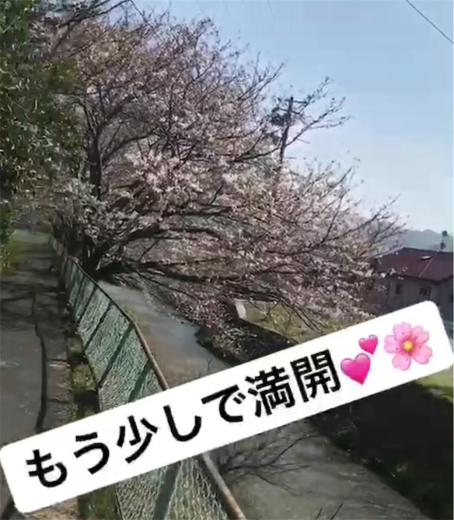 f:id:nikumaru29:20180327225556j:image