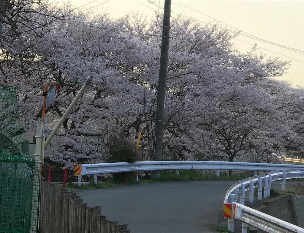f:id:nikumaru29:20180401003332j:image