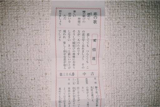 f:id:nikunoasa02:20170107233111j:image
