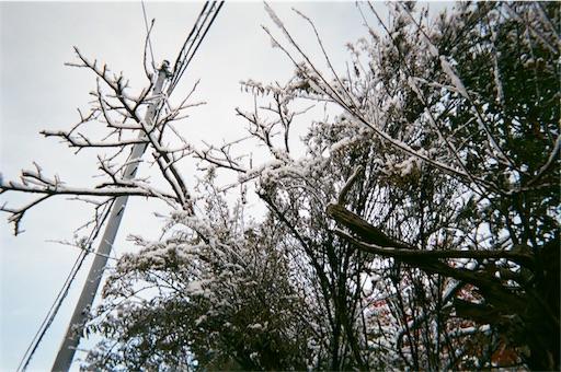 f:id:nikunoasa02:20171219210140j:image