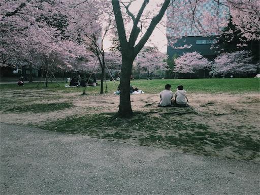 f:id:nikunoasa02:20180614190027j:image