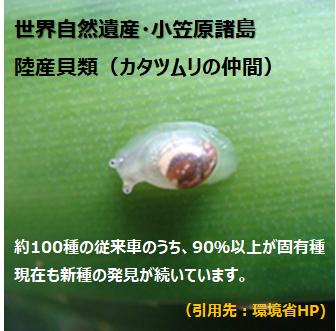 f:id:nil-blog:20210220103801p:plain