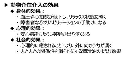 f:id:nil-blog:20210608085208p:plain