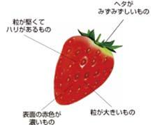 f:id:nil-blog:20210810091348p:plain