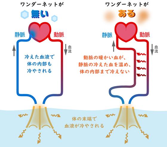 f:id:nil-blog:20210908100442p:plain