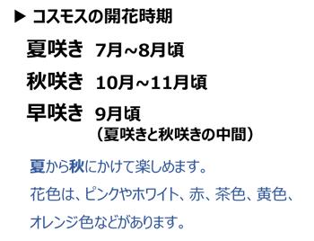 f:id:nil-blog:20210910110805p:plain