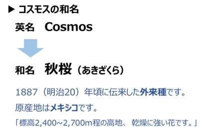 f:id:nil-blog:20210910110843p:plain