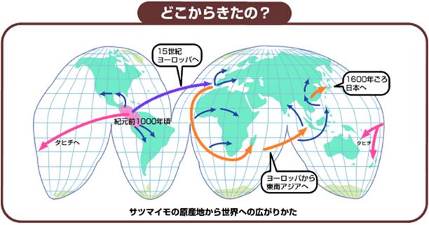 f:id:nil-blog:20211009100721p:plain