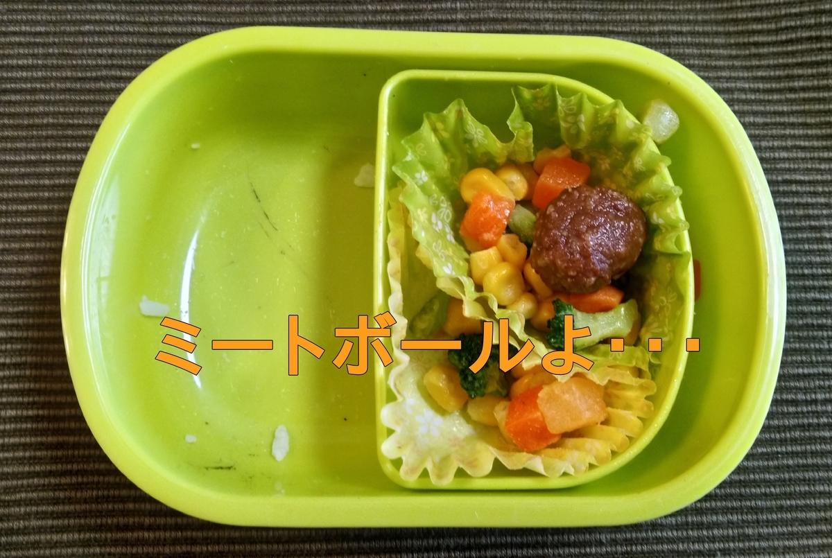 f:id:nina_ryu:20210417055546j:plain