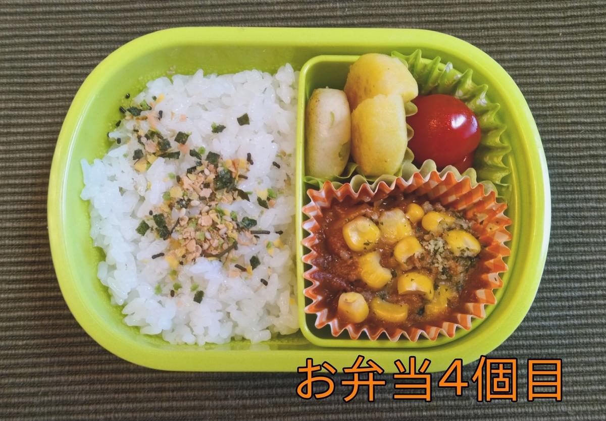 f:id:nina_ryu:20210427033729j:plain