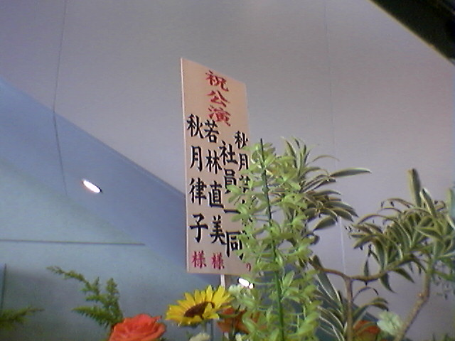 f:id:ninamu:20080727134229j:image:w450