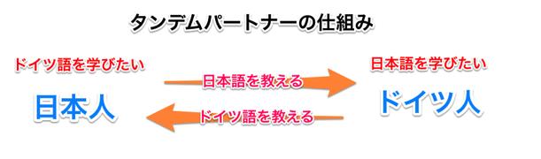 タンデムパートナーを説明した図式