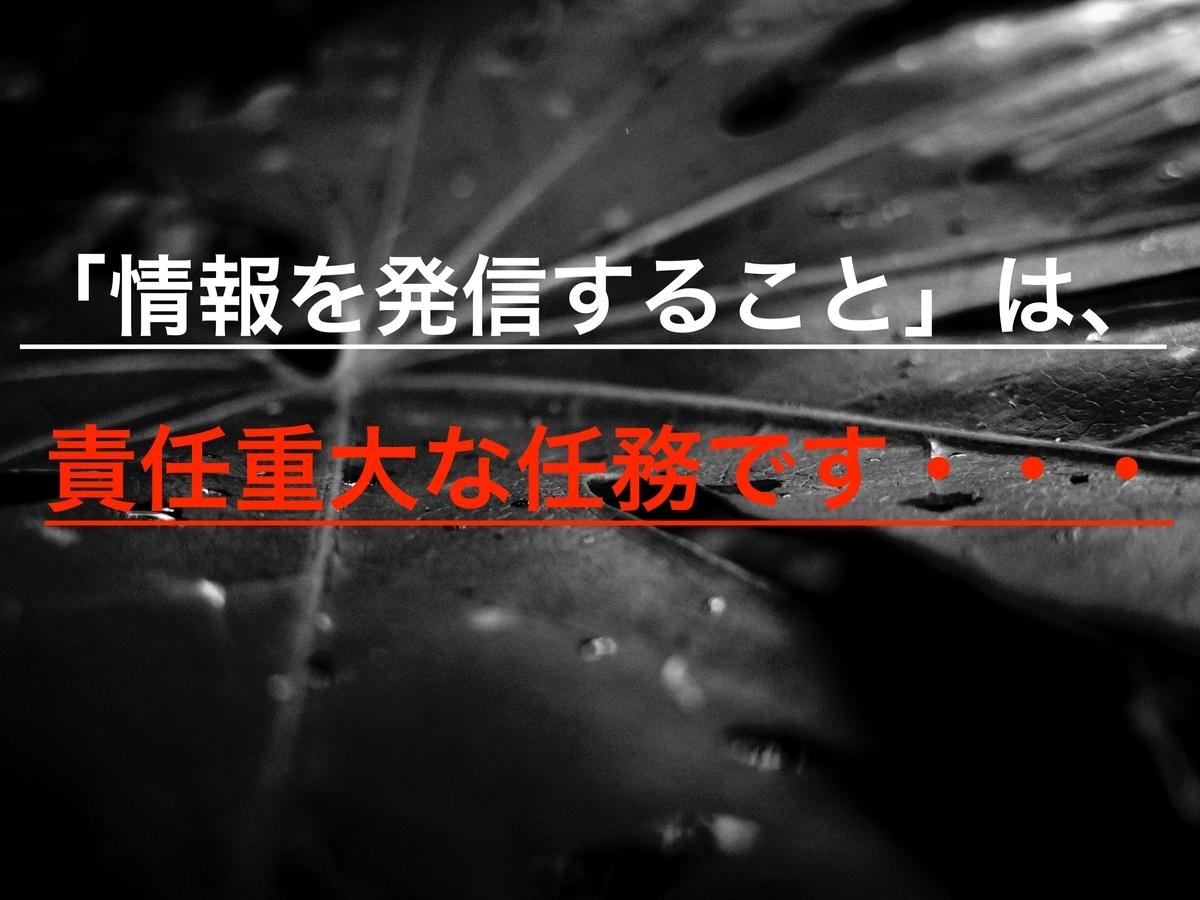 f:id:ninjalifegudaguda:20190529231056j:plain