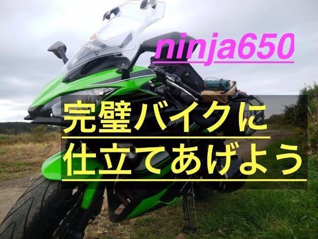 f:id:ninjalifegudaguda:20190802054121j:plain