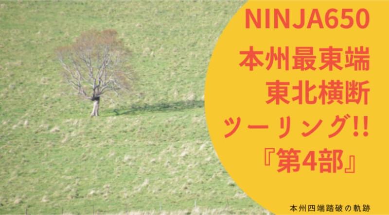 f:id:ninjalifegudaguda:20210502152212j:plain
