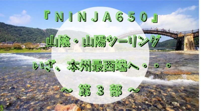 f:id:ninjalifegudaguda:20210502161239j:plain