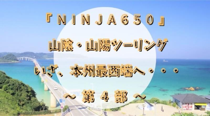f:id:ninjalifegudaguda:20210502161246j:plain