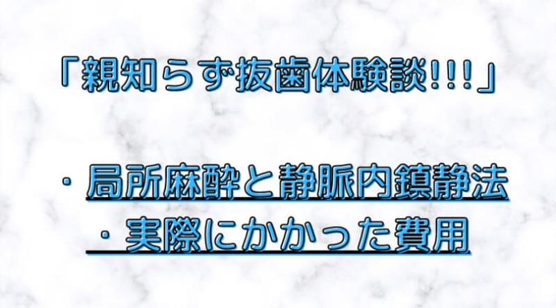 f:id:ninjalifegudaguda:20210502171218j:plain