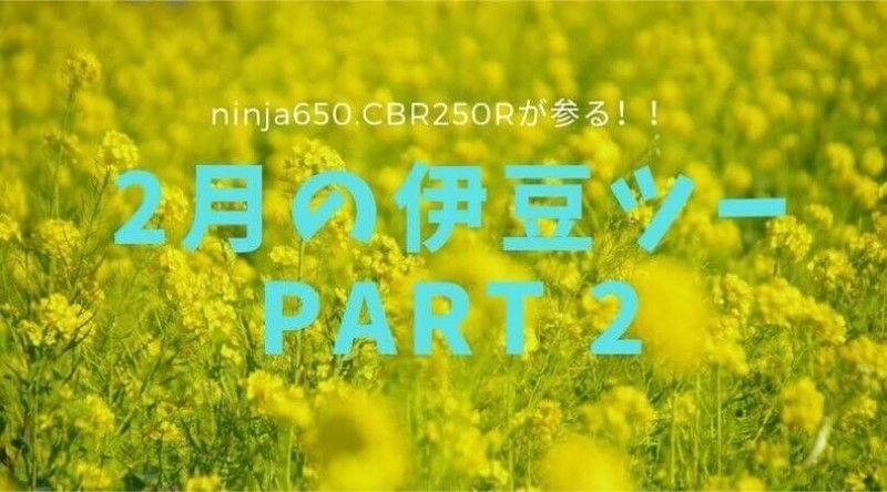 f:id:ninjalifegudaguda:20210503105232j:plain