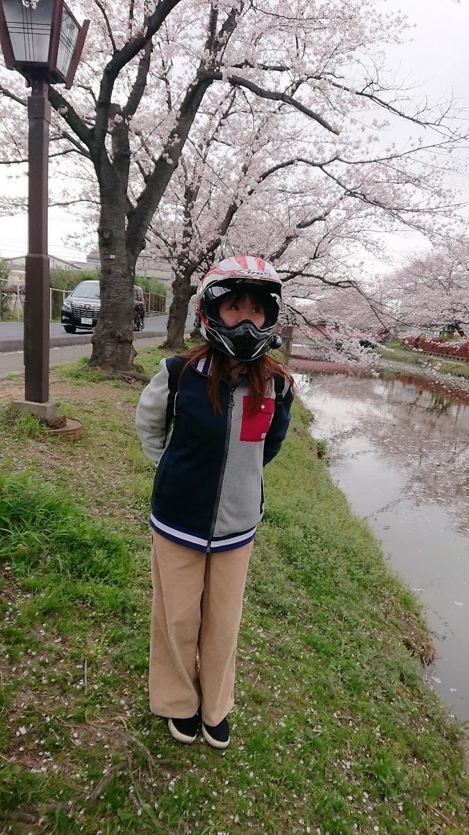 f:id:ninjamegumaru:20200330084655j:plain