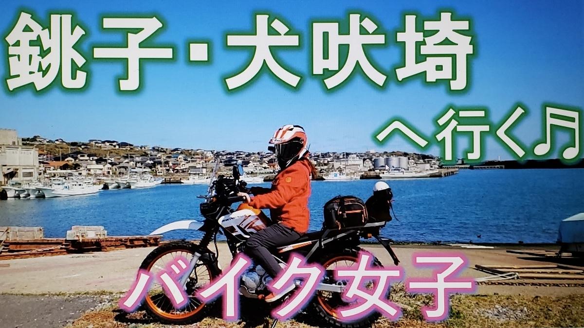 f:id:ninjamegumaru:20200403221112j:plain