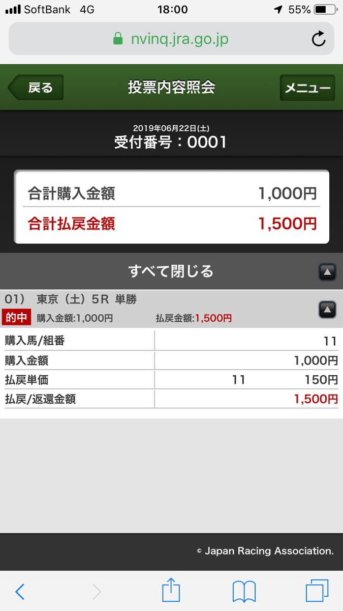 f:id:ninjin-sky:20190624185431p:plain