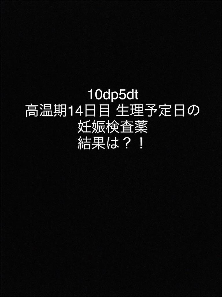 f:id:ninkatsuinusa:20170701223958j:image