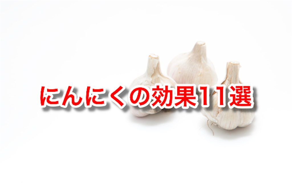 f:id:ninniku114:20161222084050p:image