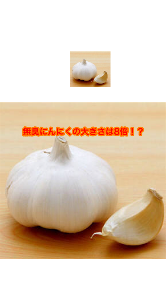 f:id:ninniku114:20170817024934p:image