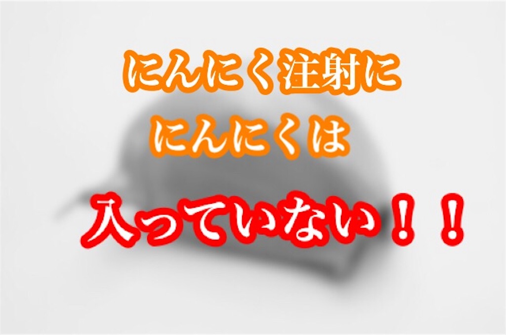 f:id:ninniku114:20171207103158j:image