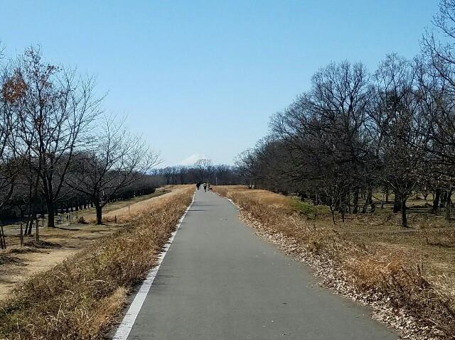 f:id:ninomaeituki:20170208122203j:image