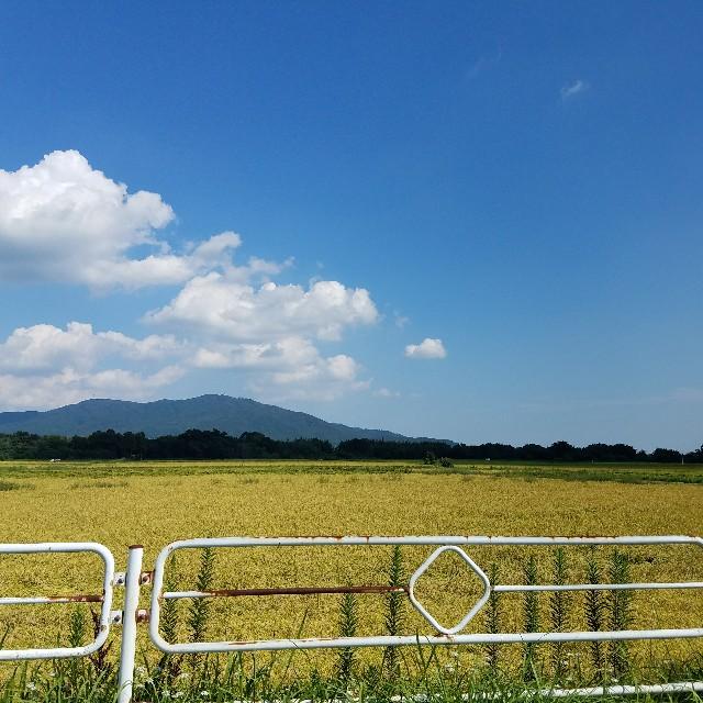 f:id:ninomaeituki:20170920182414j:image