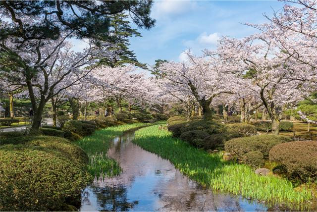 f:id:ninomiya-shinta:20180222102458j:plain