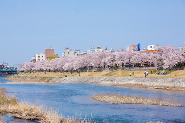 f:id:ninomiya-shinta:20180223165410j:plain