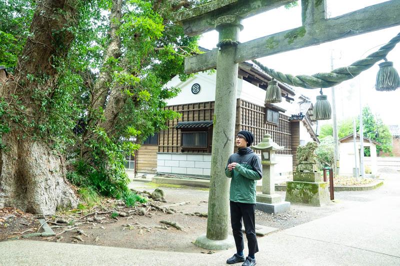 f:id:ninomiya-shinta:20191223162852j:plain